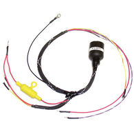 CDI OMC Internal Wiring Harness, Replaces 389269, 389764