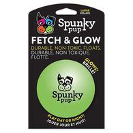 Spunky Pup Fetch & Glow Ball, Large