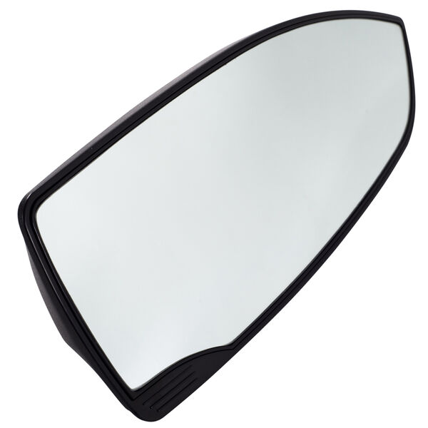 Roswell Mirror