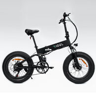 Ridel Tripster Electric Bike