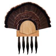 Walnut Hollow Five Beard Turkey Display Kit, Oak