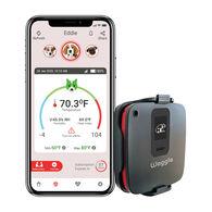 Waggle RV Pet Monitor 4G Lite