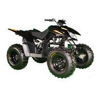 DRR EV Lightning 2x4 ATV