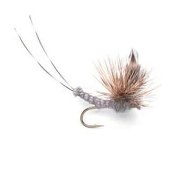 Superfly Dry Fly