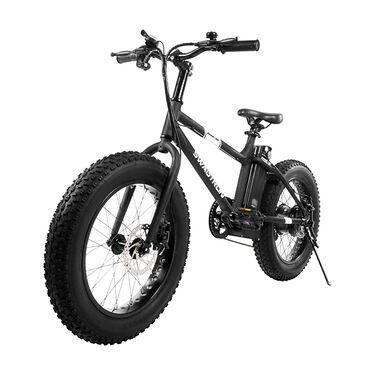 Swagtron EB-6 E-Bike, Black