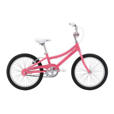Fuji Rookie Series Kid's Bike