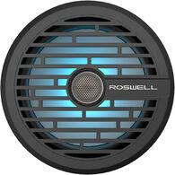"Roswell R1 8"" In-Boat Speaker"