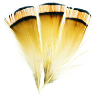 Superfly Golden Pheasant Tippet