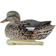 Avian-X Topflight Black Duck Series Decoys 6-Pack