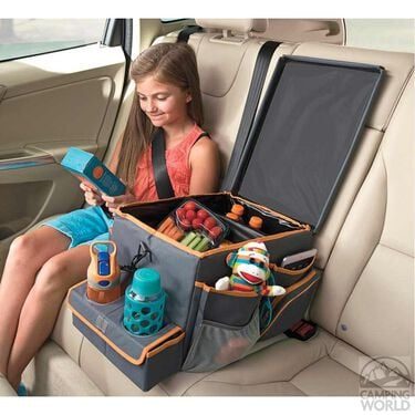 Back Seat Cooler & Play Station