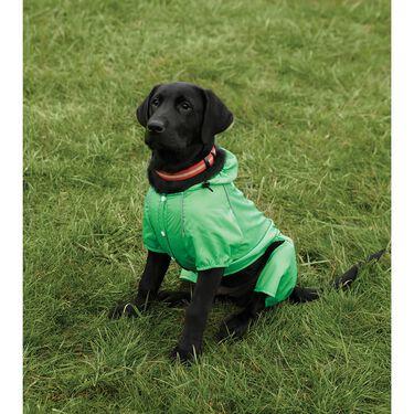 Green Rain Slicker, Large