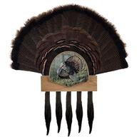Walnut Hollow Five Beard Turkey Display Kit, Oak with Image