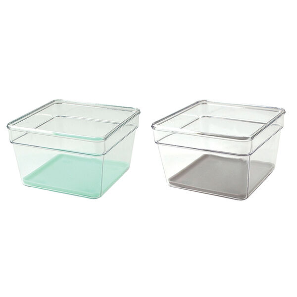 Kitchen Small Organizer Bin