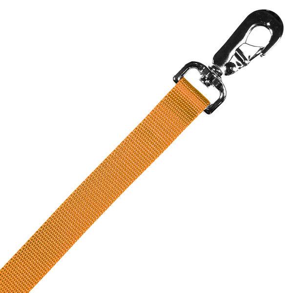 "Scott Pet Orange Lead Double Ply, 1"" x 48"""