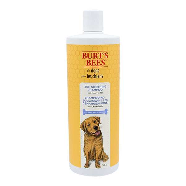 Burt's Bees Itch-Soothing Shampoo with Honeysuckle, 32 oz.