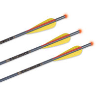 TenPoint Omni-Brite 2.0 Lighted Magnum XX75 Aluminum Crossbow Bolts 3-Pack