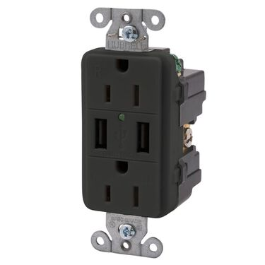 Double USB Charger with Double 110v outlet - Black