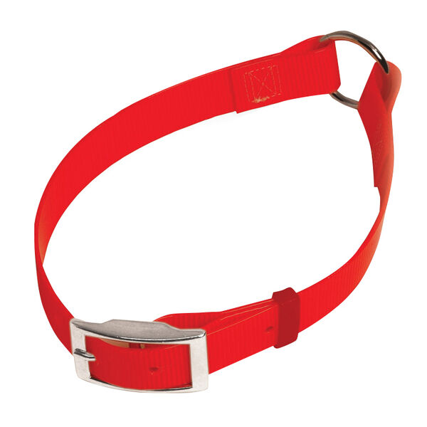 "Scott Pet Bio Collar, 1"" x 20"""