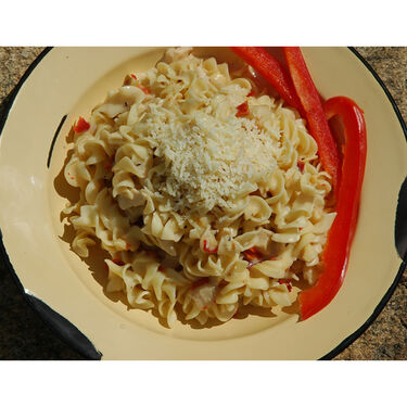 Backpacker's Pantry Fettuccini Alfredo with Chicken Freeze-Dried Meal