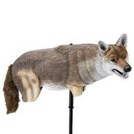 Lucky Duck Yote Coyote Decoy