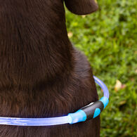 Glowing Rechargeable LED Pet Collar, Blue
