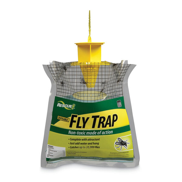Sterling Disposable Fly Trap