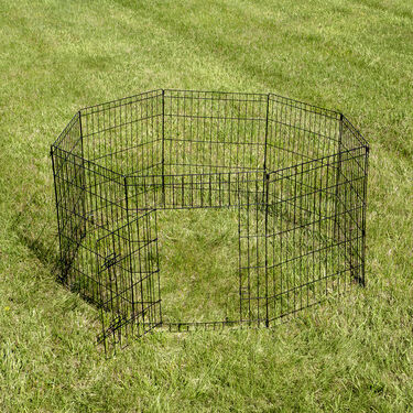 Wire Pet Fence