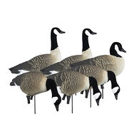 Higdon APEX Full-Size Canada Goose Variety Decoys, 6 Pk.