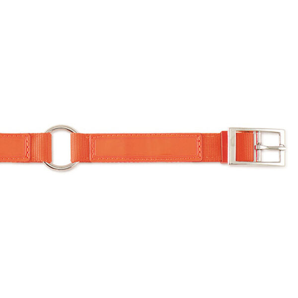 "Scott Pet Hot Orange Field Collar, 1""W x 18""L"