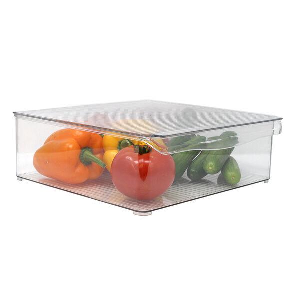 Gourmet Kitchen Refrigerator Bin with Lid