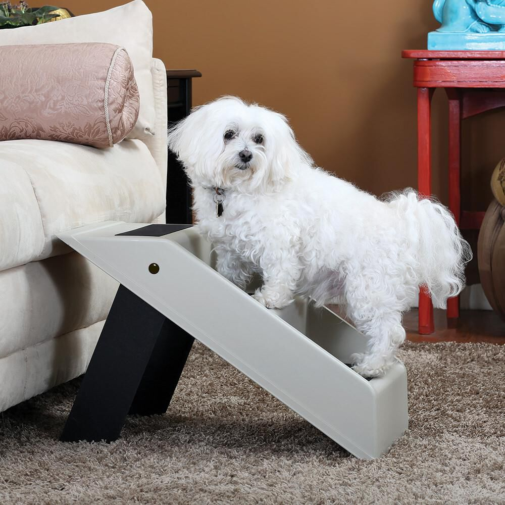 Surprising Etna Portable Pet Steps Gmtry Best Dining Table And Chair Ideas Images Gmtryco