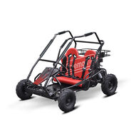 Coleman Powersports KT-196 Go-Kart, Red, 200cc