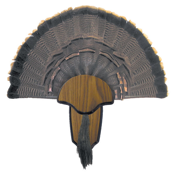 H.S. Strut Turkey Tail & Beard Mounting Kit