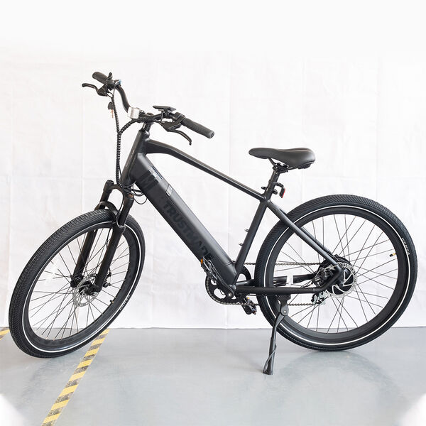 Trustmade TE-300 Electric Bicycle