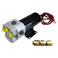 Raymarine Type 1 Reversing Hydraulic Pump - 12V