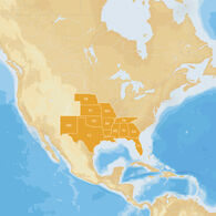 Navionics Hot Maps Platinum Cartography, South