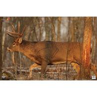 """Birchwood Casey EZE-Scorer 23"""" x 35"""" Whitetail Deer Paper Target, 2 pk."""