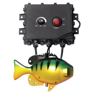 Aqua-Vu AV Multi-Vu w/ Control Box, Camera, & Cable