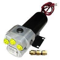Raymarine Type 2 Reversing Hydraulic Pump - 12V