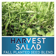 Real World Wildlife Harvest Salad