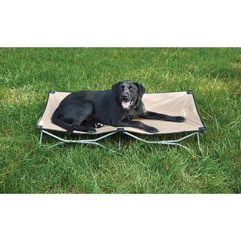 Carlson Large Portable Dog Bed